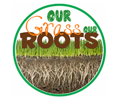 Our Grass Our Roots