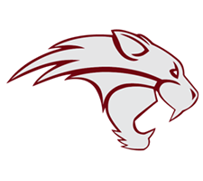 South Side Wildcats Organization